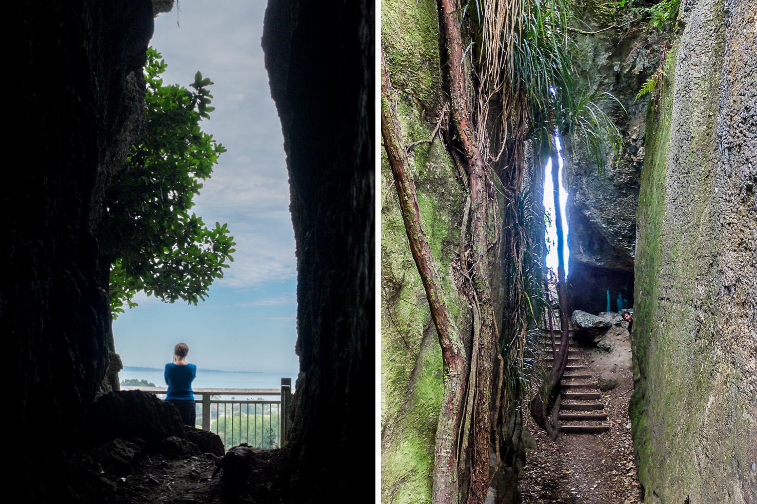 Golden Bay - Grove Scenic Reserve